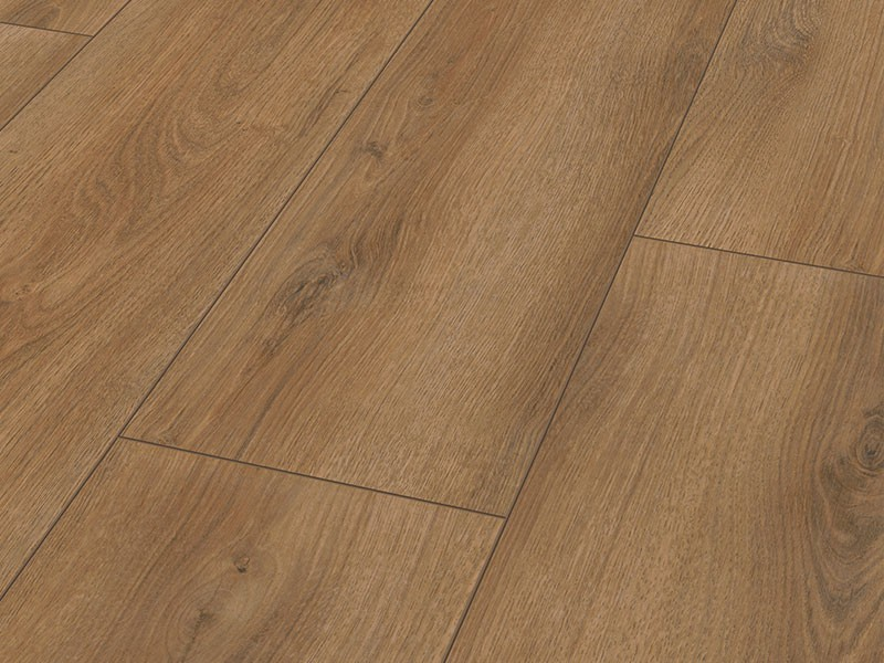 ROBLE SOMMER 3901